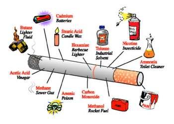 πολωνιο, καπνου, ερευνα, τεσσερις