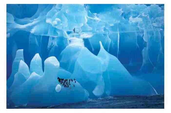 Ακραία ζωή κάτω από την Ανταρκτική